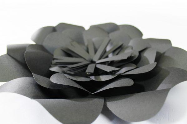 negro3